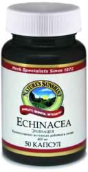 Биологически активная добавка (БАД) Echinacea (Эхинацея) NSP 50 капсул